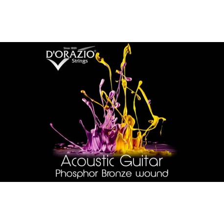 D'orazio 20, Acoustic Guitar Phosphor Bronze wound (10)